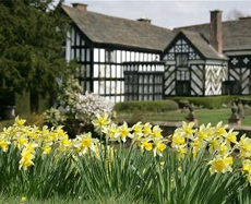 gawsworth hall cheshire