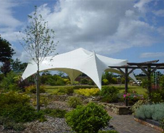 smart party marquees
